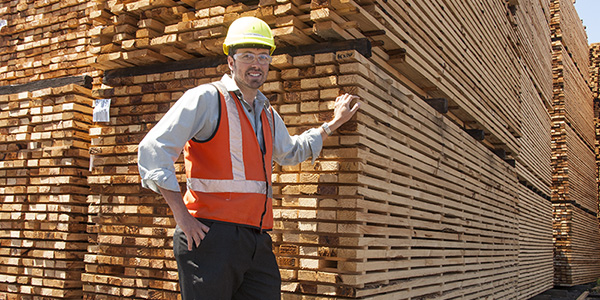 Engineered Timber Products Technician