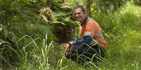 Environmental Advisor